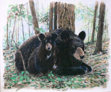 Black Bear and Cub, Acrylic on paper, $$0.0000